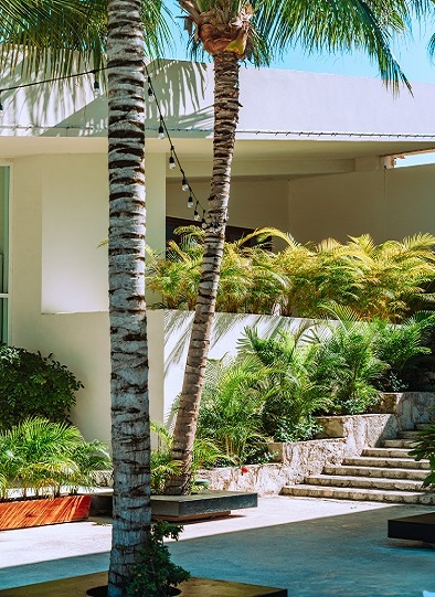 The entrance to a house with palms and green garden beds, designed by landscaping mandurah
